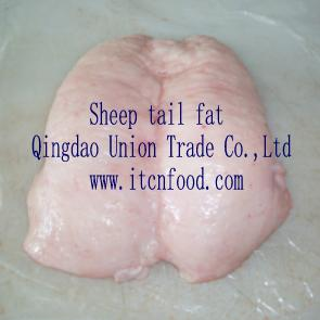 tail-fat2